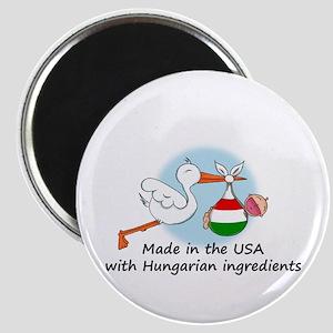 Stork Baby Hungary USA Magnet