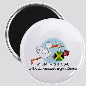 Stork Baby Jamaica USA Magnet