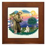 St Francis #2 / Havanese (w) Framed Tile