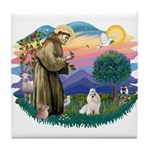 St Francis #2 / Havanese (w) Tile Coaster