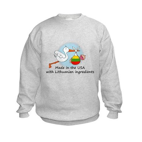 Stork Baby Lithuania USA Kids Sweatshirt