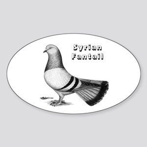 Syrian Fantail Pigeon Oval Sticker