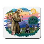 St Francis #2 / PWD (sit) Mousepad