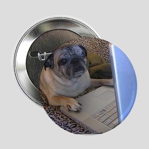 """Online Pug 2.25"""" Button"""