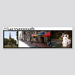 """Savannah"" 3 photo collage Bumper Sticker"