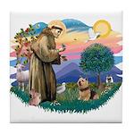 St Francis #2 / Norwich T. Tile Coaster