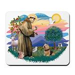 St Francis #2 / Norwich T. Mousepad