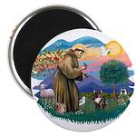 St Francis #2/ Fr Bulldog (brin) 2.25