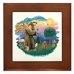 St. Fran #2/ Apricot Poodle (min) Framed Tile