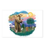 St. Fran #2/ Apricot Poodle (min) Postcards (Packa