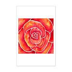Red-Orange Rose Mini Poster Print