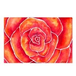 Red-Orange Rose Postcards (Package of 8)