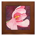 Pink Tulip Framed Tile