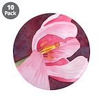 Pink Tulip 3.5