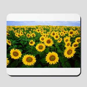 Sunflower field Mousepad