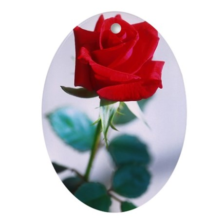 A single red rose Ornament (Oval)