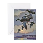Black Duck Greeting Cards (Pk of 10)