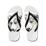 Australian Shepherd Flip Flops