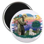 St Francis #2/ Coton De Tulear Magnet