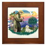 St Francis #2/ Coton De Tulear Framed Tile