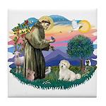 St Francis #2/ Coton De Tulear Tile Coaster