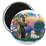 St Francis #2/ Coton De Tulear 2.25