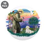 St Francis #2/ Coton De Tulear 3.5