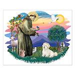 St Francis #2/ Coton De Tulear Small Poster