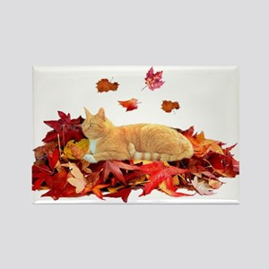 ORANGE TABBY CAT ON LEAVES Rectangle Magnet