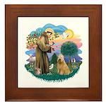 St Francis #2/ Wheaten #2 Framed Tile
