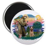 St Francis #2/ Briard (f) Magnet
