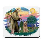 St Francis #2/ Briard (f) Mousepad