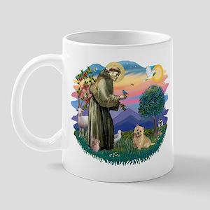 St Francis #2/ Cairn Ter Mug