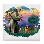 St Francis #2/ Brussels G Tile Coaster