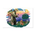 St Francis #2/ Brussels G Mini Poster Print
