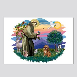 St Francis #2/ Brussels G Postcards (Package of 8)