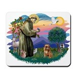 St Francis #2/ Brussels G Mousepad