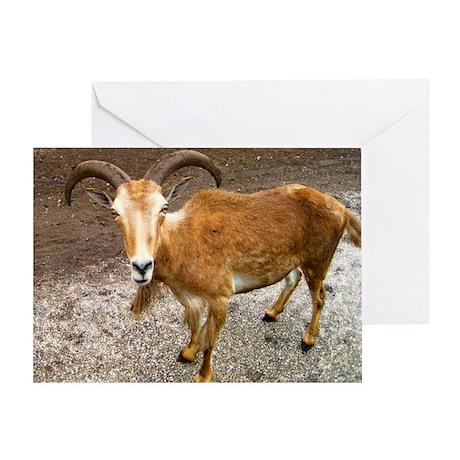Ram Goat Greeting Card