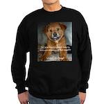 Make it Stop 5 Sweatshirt (dark)