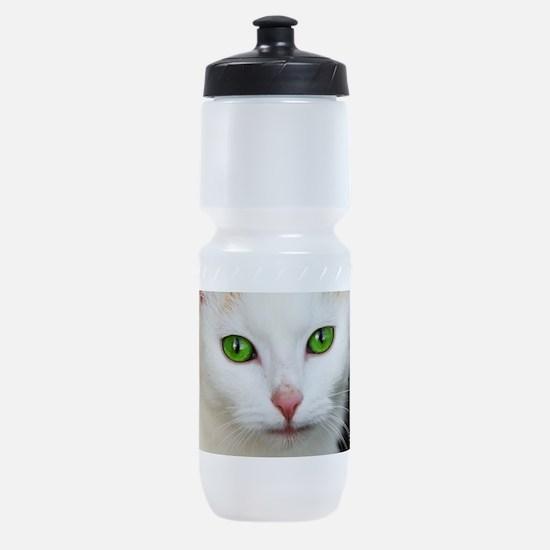 White Cat Green Eyes Sports Bottle