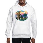 St Francis #2/ Yorkie #17 Hooded Sweatshirt