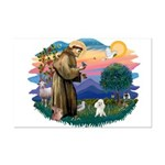 St Francis #2/ Poodle (Toy W) Mini Poster Print