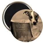 Old Fashioned JRT in Tub Magnet