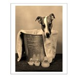 Old Fashioned JRT in Tub Small Poster