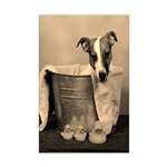 Old Fashioned JRT in Tub Mini Poster Print