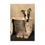 Old Fashioned JRT in Tub Mini Poster Print