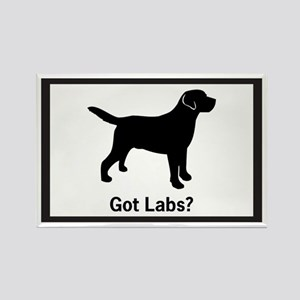 Got Labs? Silhouette Rectangle Magnet