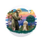 St. Fran. & Bearded Collie 3.5