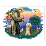 St. Fran. & Bearded Collie Small Poster