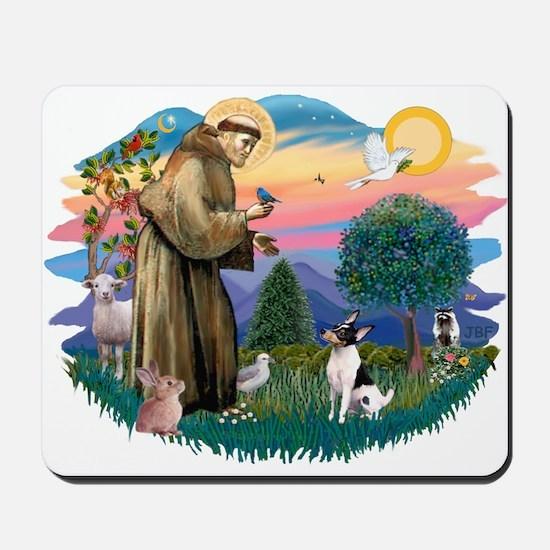 St Francis #2/ Toy Fox Ter. Mousepad